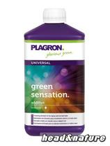 Plagron Green Sensation - Bloom Stimulator 250ml #0