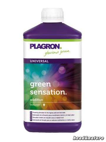 Plagron Green Sensation - Bloom Stimulator 250ml