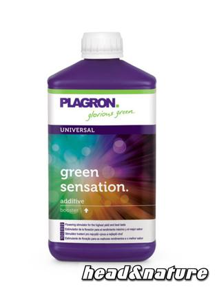Plagron Green Sensation - Bloom Stimulator 100ml