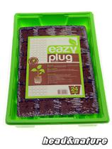 Eazy Plug Cuttings Tray (24 pcs) with greenhouse #0